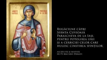 SFINȚII ZILEI: Rugăciune către Sfânta Cuvioasă Parascheva de la Iași, pentru potolirea urii și a cerbiciei celor care hulesc cinstirea sfinților (a Episcopului Macarie Drăgoi)